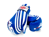 ADG-003 - Stock Design Blue Gloves