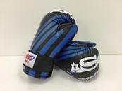 XG-03 X Series Competition Gloves/Black and Blue